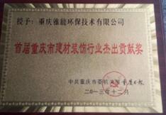 重庆市建材行业杰出贡献奖